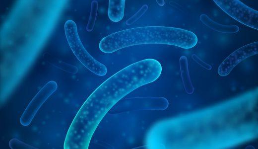 カーエアコンの臭いとバクテリアの関係とは?
