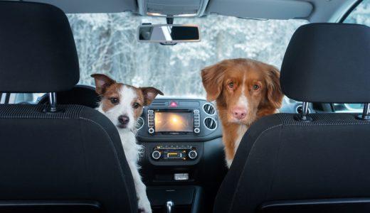 カーエアコンのオートモードとは?燃費には影響するの?