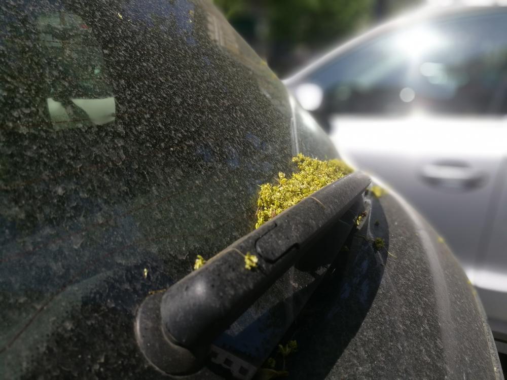 花粉対策にはカーエアコンフィルターを有効活用しよう