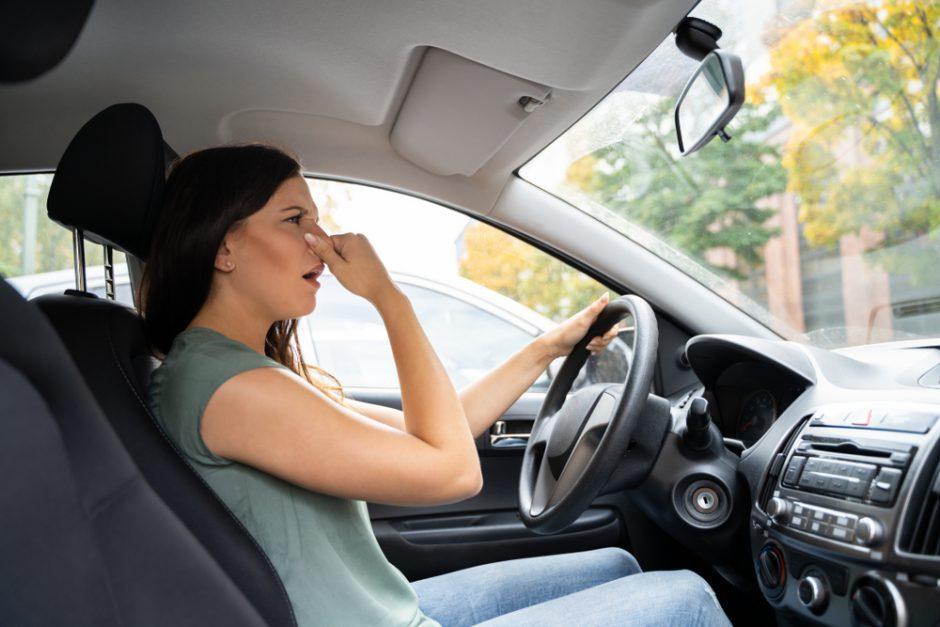 車内にカビが生えるのはなぜ?カビの除去方法や予防策を解説します
