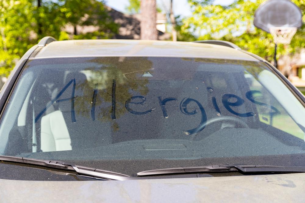 車内の花粉対策で行いたいこと