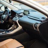 車内はダニの温床!ダニが多い場所や除去方法をご紹介します