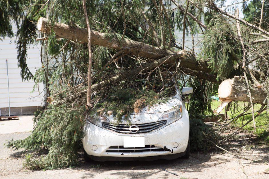車の台風対策!外装だけではなく車内環境の悪化にも注意を
