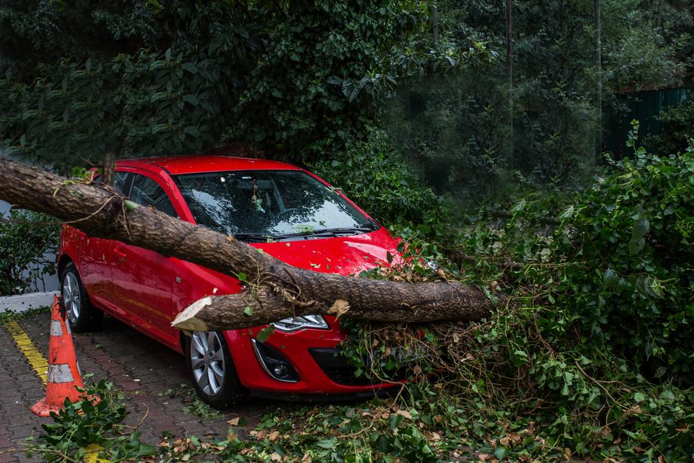 台風で車に生じる被害