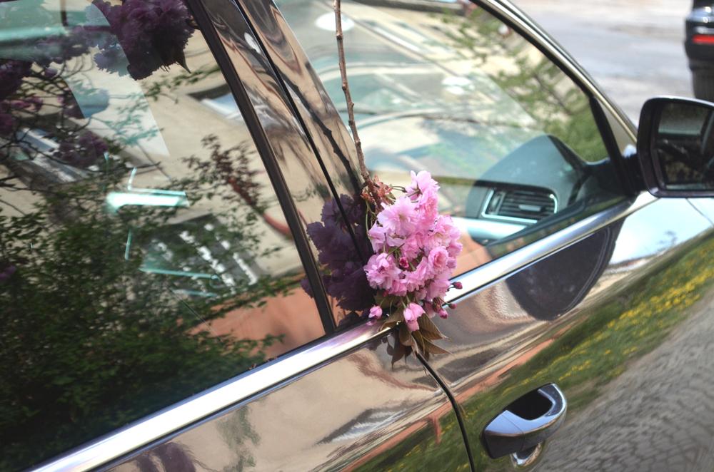 花粉は春の風物詩にあらず
