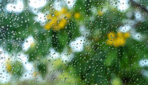 梅雨時期に車内が臭い原因とその対策方法を徹底解説